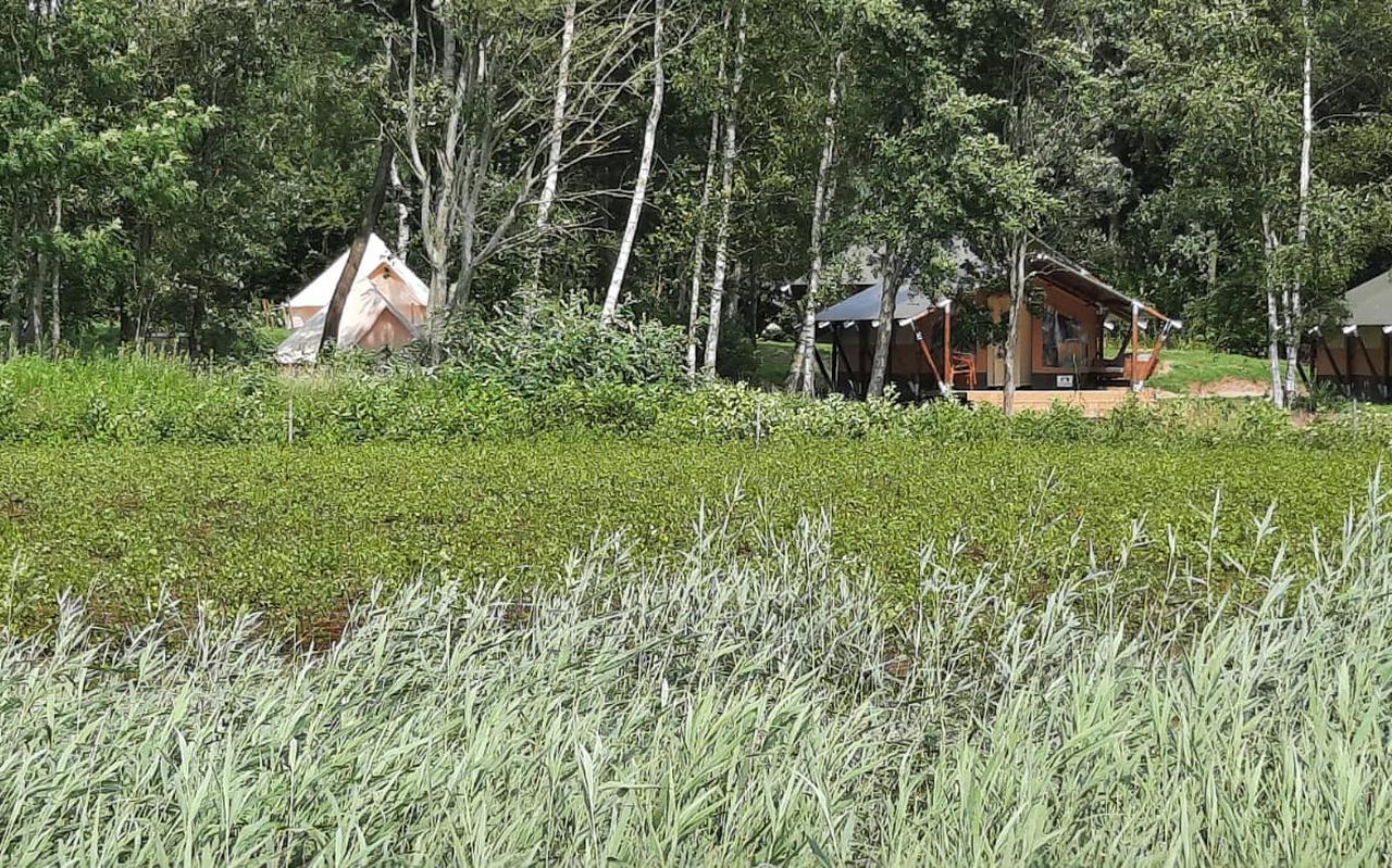 De nieuwe minicamping is ligt in de natuur van de Heemtuin.