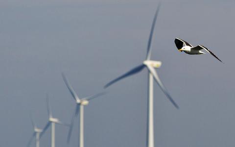 Geen grote windturbines in Midden-Drenthe