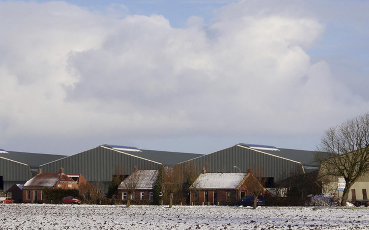 Inwoners van Den Andel vrezen dat er naast de twee reeds bestaande loodsen (rechts op de foto) achter hun woningen nog meer wordt bijgebouwd. FOTOMONTAGE MARTEN AUKES
