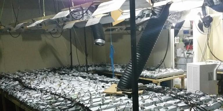 Politie ontdekt hennepkwekerij aan de Aziëweg in Assen. FOTO POLITIE ASSEN