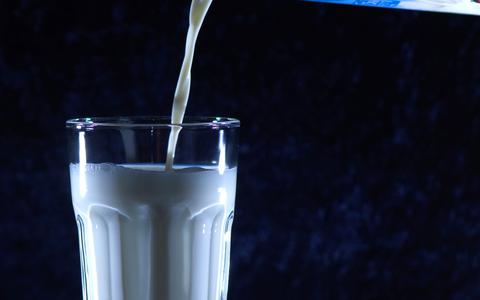 Op zoek naar de beste koemelk in Drenthe, Groningen en Friesland