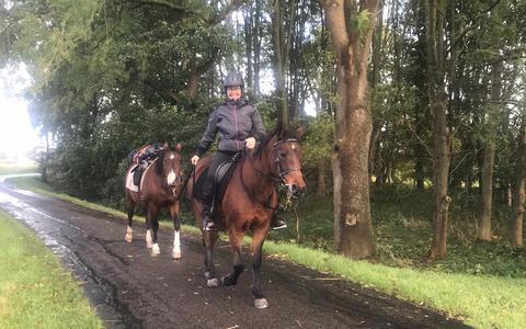 Liesbeth Bernaards onderweg met haar pony's Floor en Babs, op de laatste van vijfhonderd kilometers dwars door Nederland.