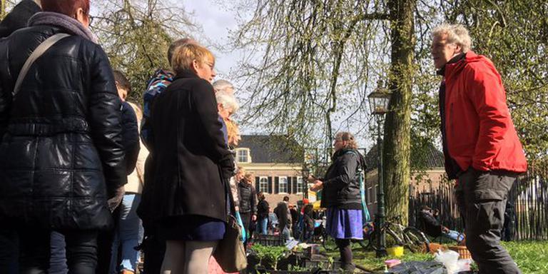Op de vrijmarkt in Assen zijn de moestuintjes mateloos populair. FOTO DVHN