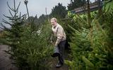 Ieder jaar dezelfde kerstboom, is dat wel zo duurzaam? 'Rijd er alsjeblieft niet voor om, want dan is de milieuvervuiling alleen maar groter'