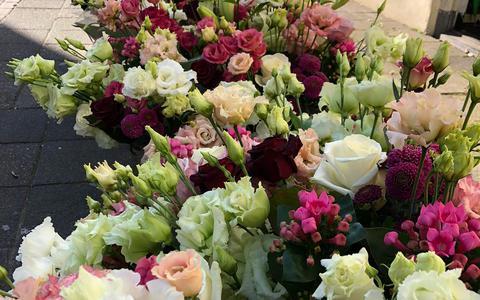 Bloemen voor de paus gaan nu naar ziekenhuizen in Noord-Nederland: maandag bloemenzee voor de zorg
