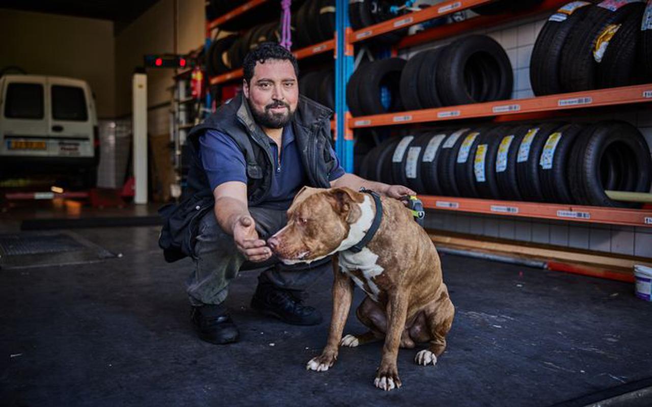 Hond Pasa mist zijn kippenvriendjes, zegt Hamza Karaman.