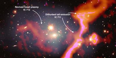 Een deel van het optische beeld van de groep sterrenstelsels Abell 1314. Dit cluster bevindt zich op een afstand van bij benadering 460 miljone lichtjaren van de aarde. De in rood en paars aangegeven gebieden zijn met LOFAR ontdekt. Foto: Amanda Wilber/LOFAR Surveys Team/NASA/CXC