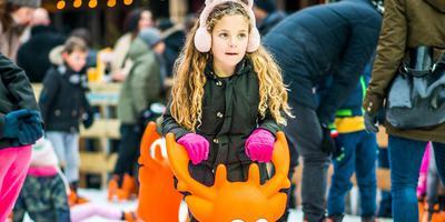 Foto: Het Groninger Winterfestijn