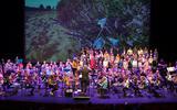 Symfonica in D tijdens een optreden.