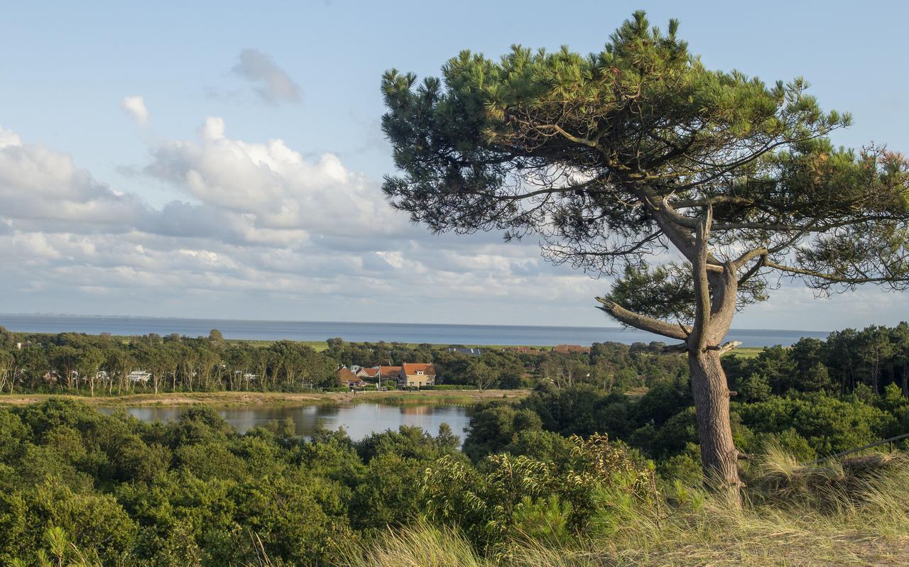 Het festivalterrein komt volgens de verleende natuurvergunning ten noorden van het buurtschap Hee.