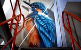 Deze man zit achter die bijzondere muurschilderingen en kunstwerken van graffiti die opduiken in Groningen. 'Cadeautjes voor de hele stad'