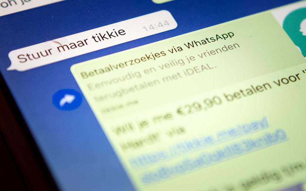 Assenaar maakte vele slachtoffers met allerlei vormen van online oplichting.