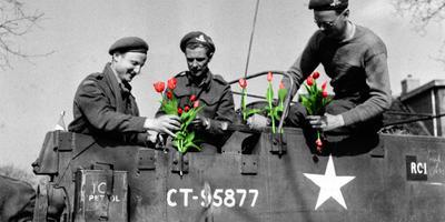 Canadese militairen met tulpen.