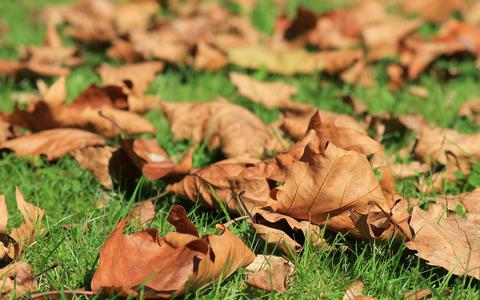 De leukste bestemmingen om te ontsnappen aan de herfst