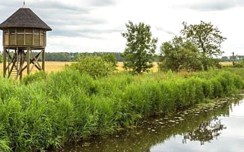 De Oude Riet is een voormalige getijdenrivier die als een (on)zichtbare ader door de gemeente Westerkwartier loopt.