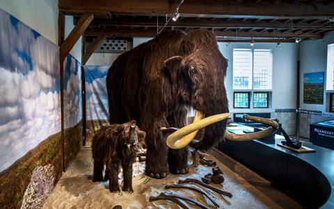 Museumtest: OERmuseum Diever verbindt Drentse prehistorie met de geschiedenis van de mensheid