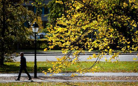 Goed nieuws voor Sint: geen winters weer, maar zacht en zonnig in Drenthe en Groningen