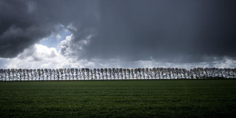 De lucht is een essentieel onderdeel van het Groninger landschap. Foto: Kees van de Veen