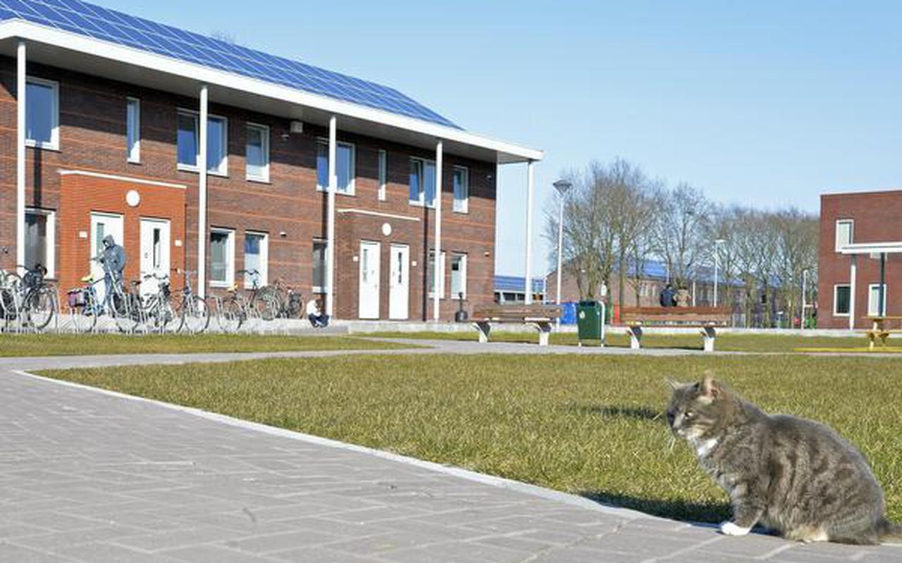De eerste woongebouwen in het asielcentrum in Ter Apel zijn inmiddels klaar. FOTO BOUDEWIJN BENTING